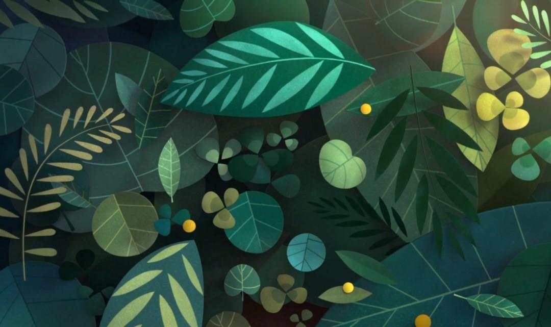 «Tant de Forêts» – Corto animado