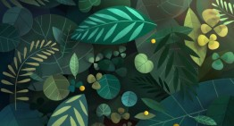 """Tant de Forêts"" – Corto animado"