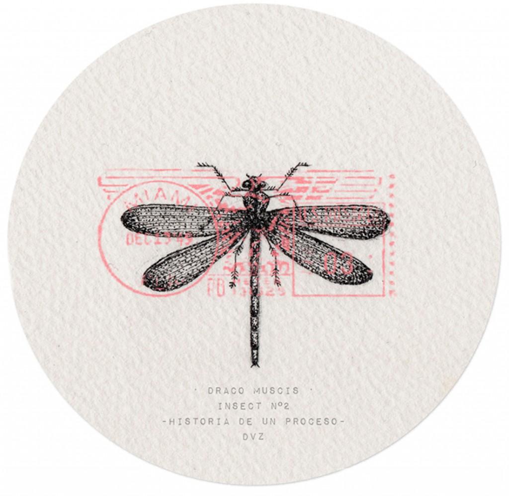 Insect No.2 -Historia de un Proceso - Tinta // Madrid, 2015 // DVZ
