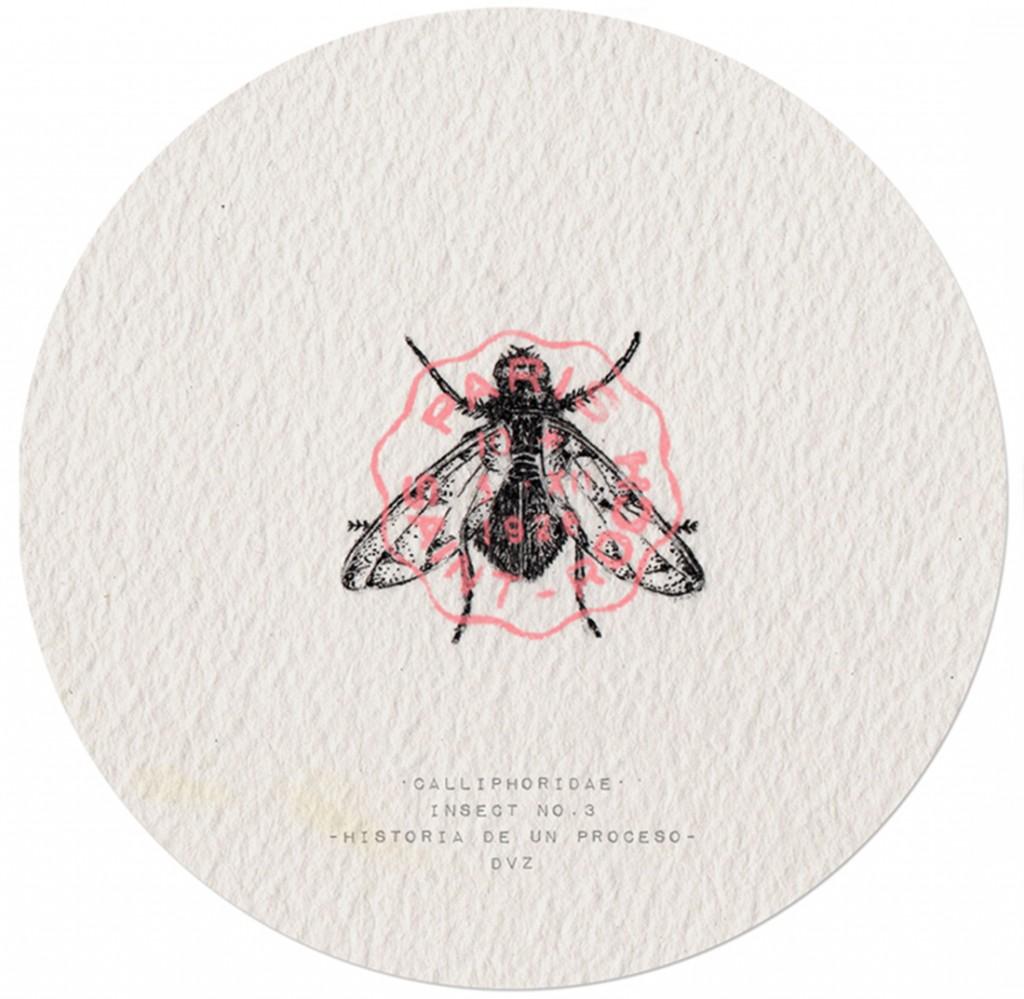 Insect No.3 -Historia de un Proceso - Tinta // Madrid, 2015 // DVZ