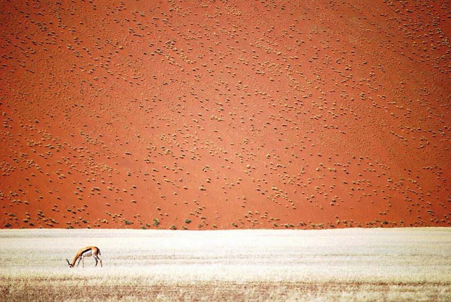 concurso-fotografia-viajes-national-geographic-2016-18