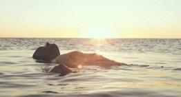 """Vídeo de la semana: LA BANDA DE FESSER – """"Japón"""""""