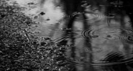 Sobre la lluvia