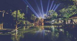 Nace Live Music Festival: dos días de directos electrónicos en plena selva de Tulum